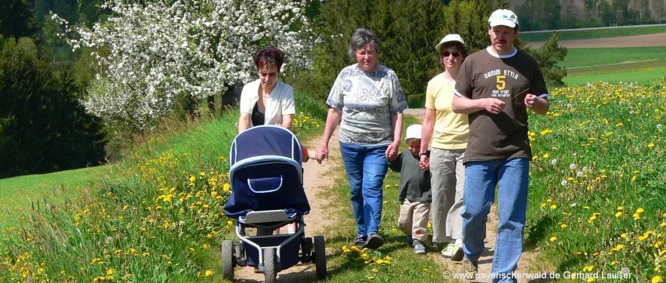 Bayerischer Wald Familienurlaub günstig am Familienbauernhof oder Familienhotel