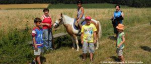 Bayerischer Wald Reiterhof und Ponyhof Urlaub in Bayern