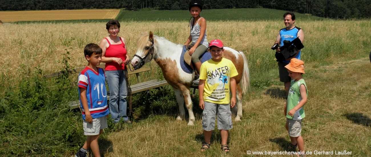 Ponyhof und Reiterhof Bayerischer Wald