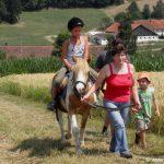Bayerischer Wald Reitferien für Kinder in Bayern