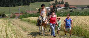 Bayerischer Wald Reitferien für Kinder und Jugendliche
