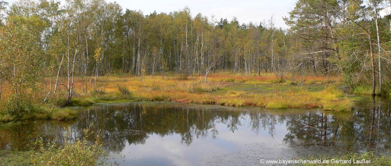 Sehenswürdigkeiten Oberpfälzer Wald Ausflugsziele und Highlights