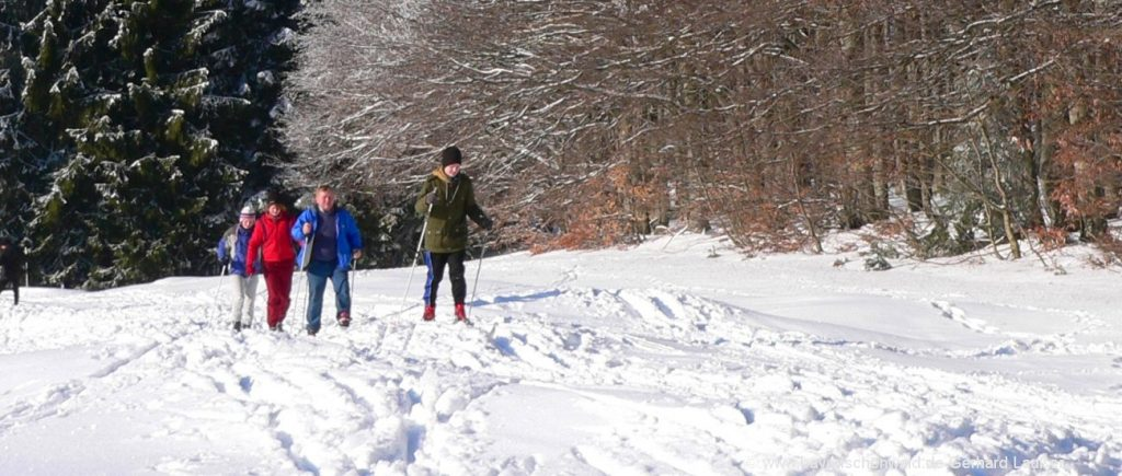 Bayerischer Wald Skihütte mieten in Bayern - Skifahren, Langlaufen ...