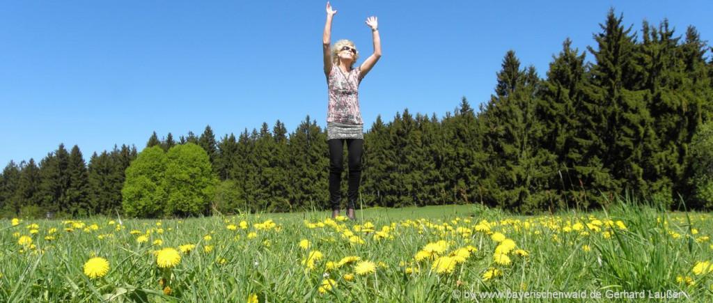 meditation-yogaurlaub-bayern-natururlaub-bayerischer-wald