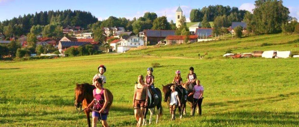 weiderer-ferienhof-schweinhuett-bauernhof-regen-reitehof