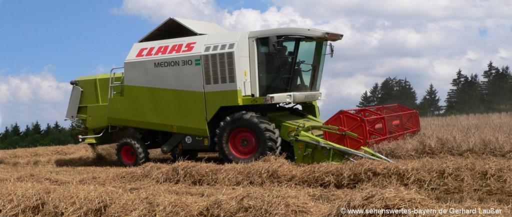 Bauernhofurlaub in Bayern mit Traktor fahren und Feldarbeit